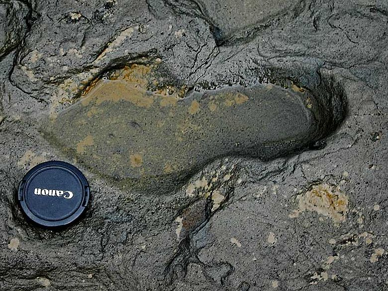 Menschlicher Fußabdruck aus dem Pleistozän