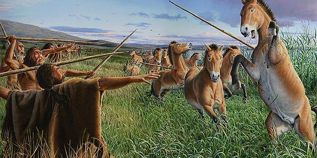 Wildpferd-Jagd