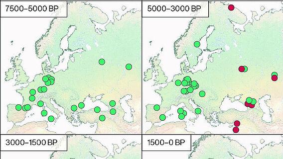Karte: Geografische Verteilung historischer HBV-Genome