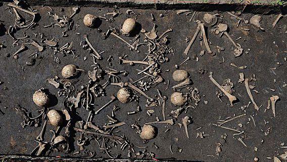 Bisher wurden Gebeine von mehr als hundert Individuen auf dem Schlachtfeld entdeckt
