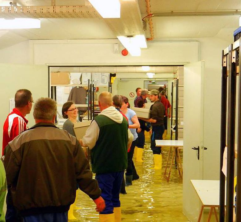 Rettung der Funde vor dem Hochwasser im Depot des Landesmuseums Halle