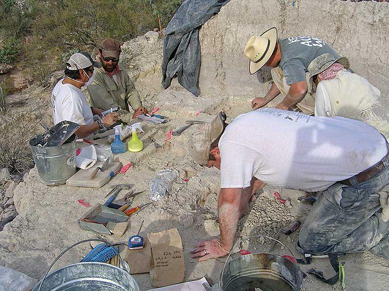 Archäologen bei der Arbeit