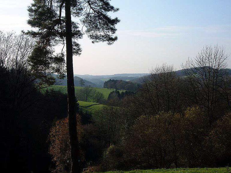Landschaftsbild des Bergischen Landes, westlich von Oberfrielinghausen (Foto: Herzog)