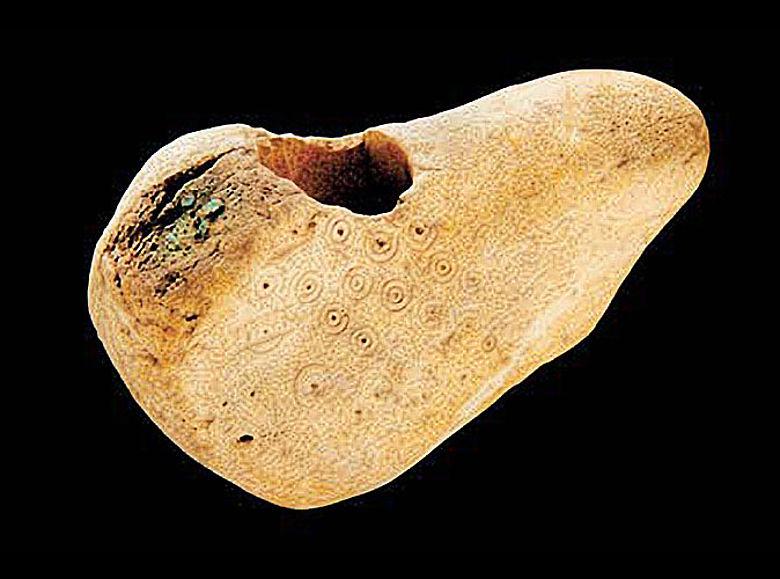 Mit Kreisaugenmotiven verzierte bronzezeitliche Hirschgeweihaxt. © LDA Sachsen-Anhalt