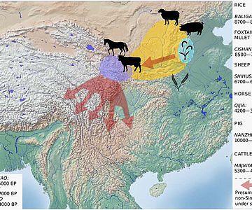 Die rekonstruierte Expansion nicht-sinitischer Sprachen