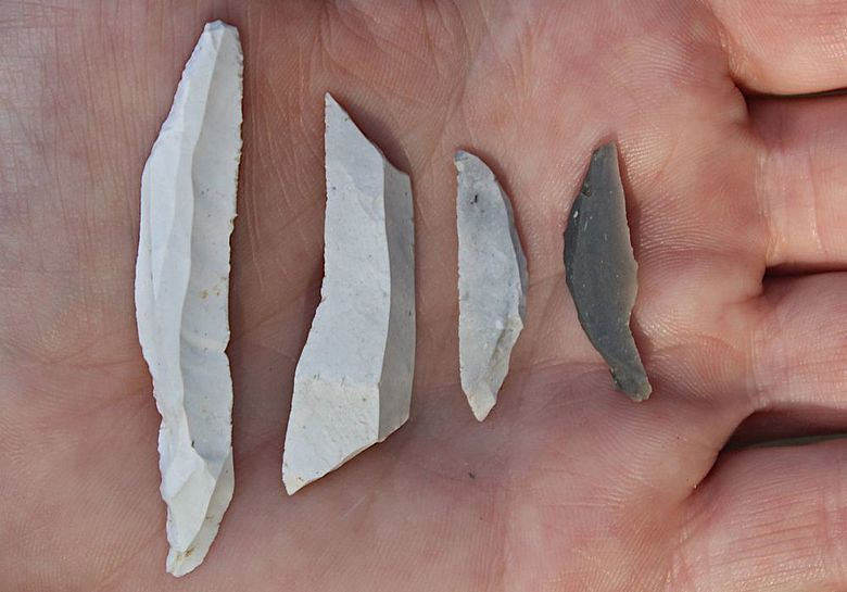 Vier der neu gefundenen Pfeilspitzen oder Messerklingen aus Feuerstein vom Ende der Altsteinzeit