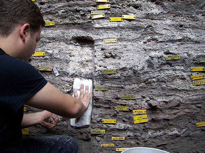 Christopher Miller nimmt Proben für mikroskopische Untersuchungen (Foto: Wadley)