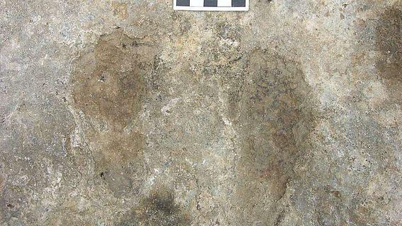 Die im Travertin hinterlassenen Hand- und Fußabdrücke