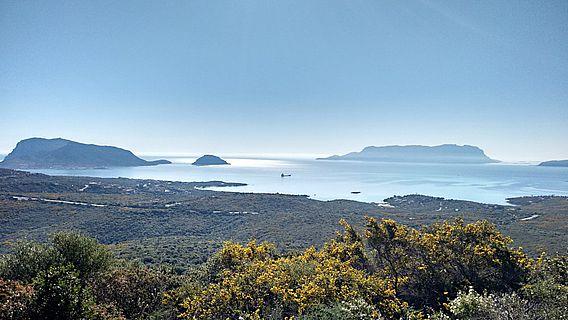 Die Insel Tavolara liegt nordöstlich vor Sardinien