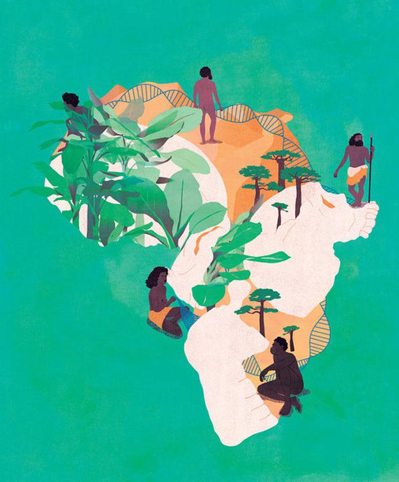 Grafik: Evolution und Lebensräume in Afrika