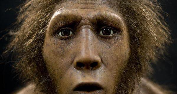 Die Rekonstruktion des 400.000 Jahre alten Homo erectus (Foto: LWL/Oblonczyk)