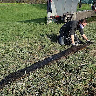 Die erste Planke des Bootes aus dem Hochmittelalter ist an Land