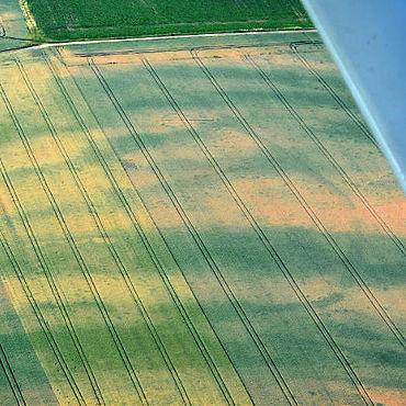 Das Erdwerk zeichnet sich im Luftbild ab