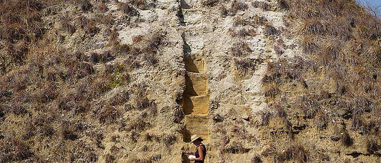 Sedimentuntersuchungen