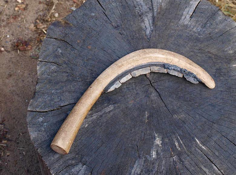 Nachbau einer neolithischen Sichel