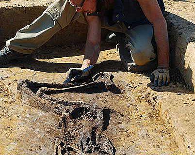 Lillith, oder Knochenfund Nr. 4953 aus Düren-Arnoldsweiler, gibt Zeugnis über die ersten Bauern im Rheinland (Foto: Fa. Wurzel-Archäologie)