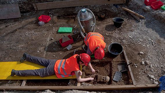 Studierende der Universität Basel legen unter fachkundiger Anleitung der Archäologischen Bodenforschung Skelette frei (Bild: Kanton Basel)