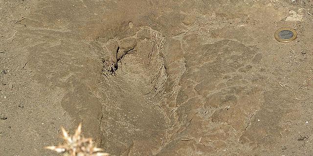 Fussabdruck in Vulkanasche