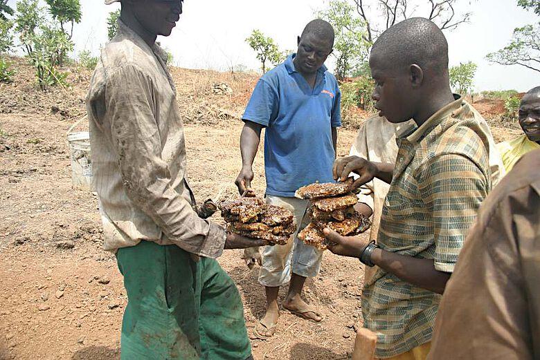 Auch heute noch beliebt: Grabungsmitarbeiter essen frisch gesammelten wilden Honig