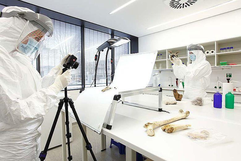 Dokumentation von Knochenproben im Reinstlabor
