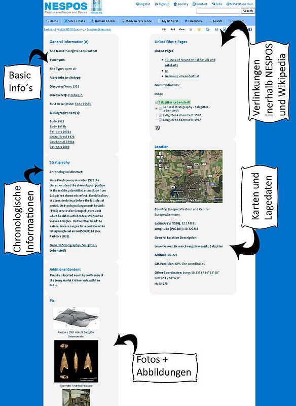 Übersicht des Fundplatz sheets und den an dieser Stelle platzierten Informationen; Beispielfundplatz ist Salzgitter Lebenstedt.