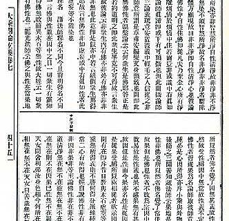Eine Seite aus dem buddhistischen Kommentartext in der modernen Standardausgabe