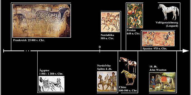 Beispiele von Tigerschecken bei Pferden in Artefakten und Abbildungen