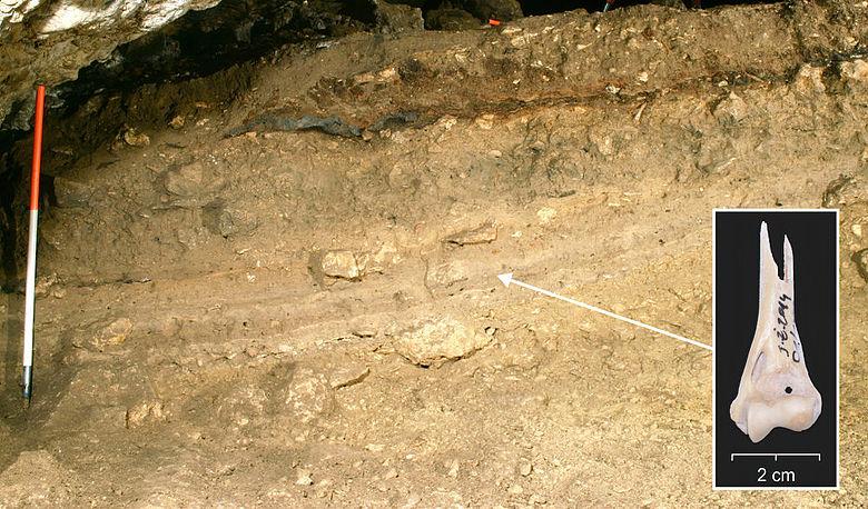 Archäologische Schichtenfolge in der Żarska-Höhle