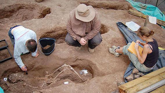 Ausgrabung auf St. Helena