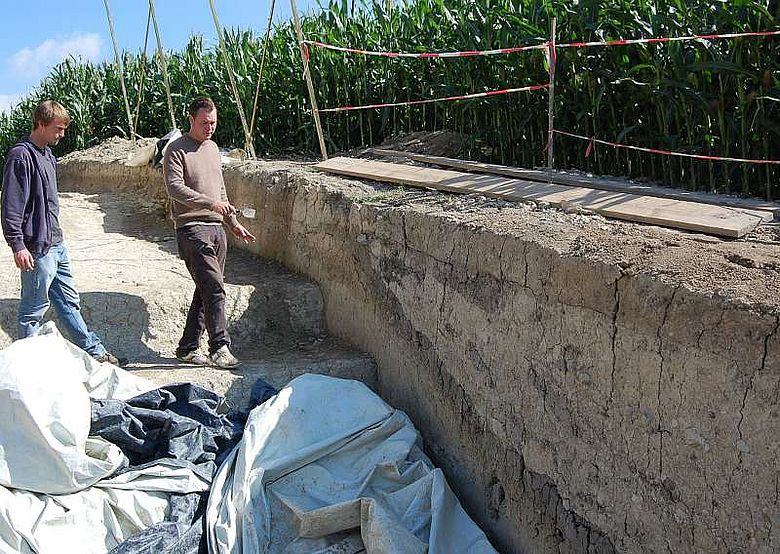 Gut sichtbar ist der Graben der Wallburg im Bodenprofil der Ausgrabung. (Foto: LWL/Burgemeister)