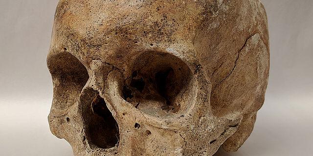 Mittelalterlicher Schädel