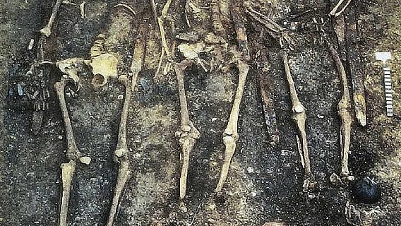 Alamannengrab von Niederstotzingen