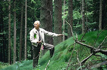 Reste des Limeswalles am Feldberg im Taunus