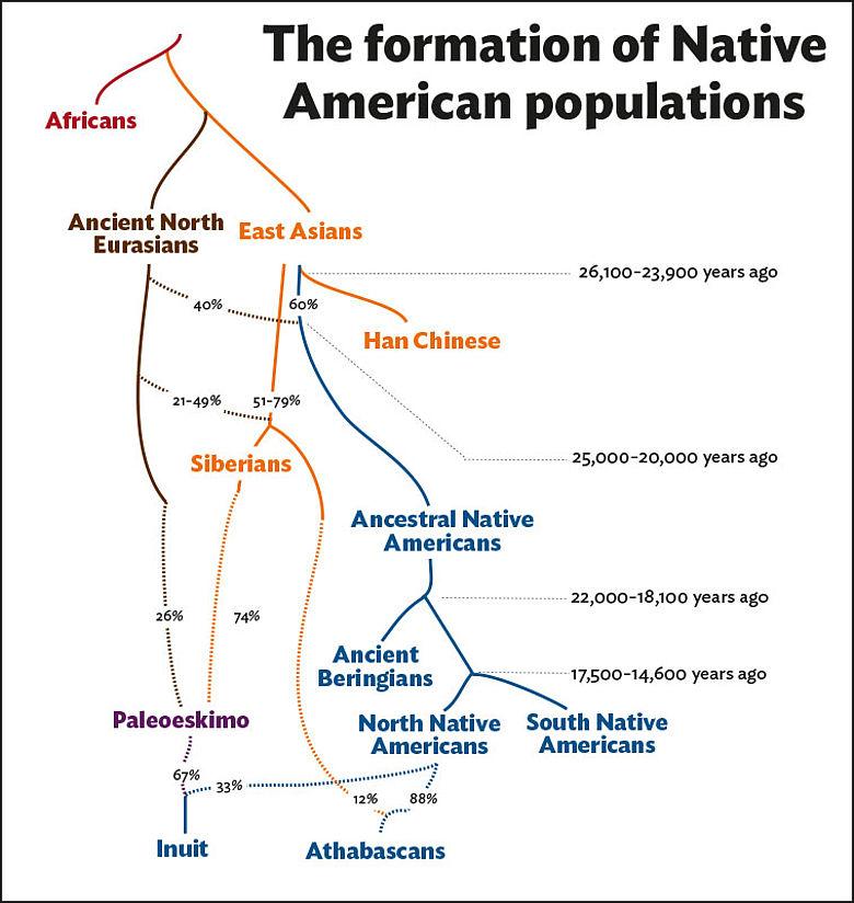 Genetischer Stammbaum amerikanischer Ureinwohner