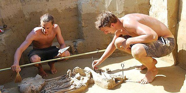 """Archäologen bei der Freilegung des """"reichsten"""" Grabes des Gräberfeldes aus der Frühen Bronzezeit (Foto: NÖ Museum für Urgschichte)"""