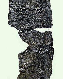 Optimale Erhaltung unter Wasser: Eine Flechtsandale aus Gehölzbast, Schuhgröße 36, aus den Ablagerungen (Schicht 16) einer Pfahlbausiedlung in Sipplingen am Bodensee.