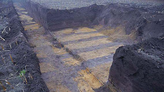 Beinahe wie mit dem Lineal gezogen zeichnen sich die mittelalterlichen Eschgräben im Erdreich ab