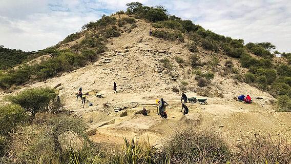 Ewass Oldupa, Oldupai-Schlucht, Tansania