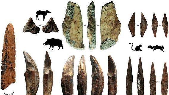 Werkzeuge aus Knochen und die Tiere, von denen diese Knochen stammen aus Fa-Hien Lena