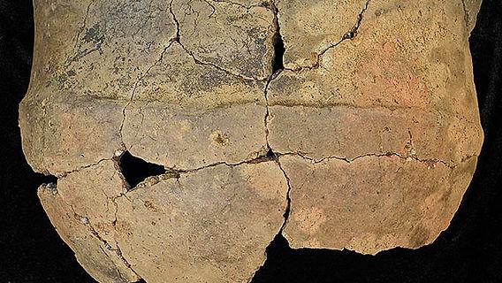Neolithische Schale aus Knocknab