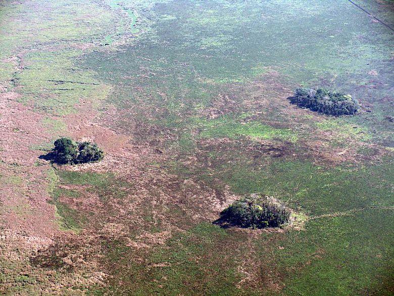 Die Siedlerinnen und Siedler legten schätzungsweise 4.700 künstliche Waldinseln an