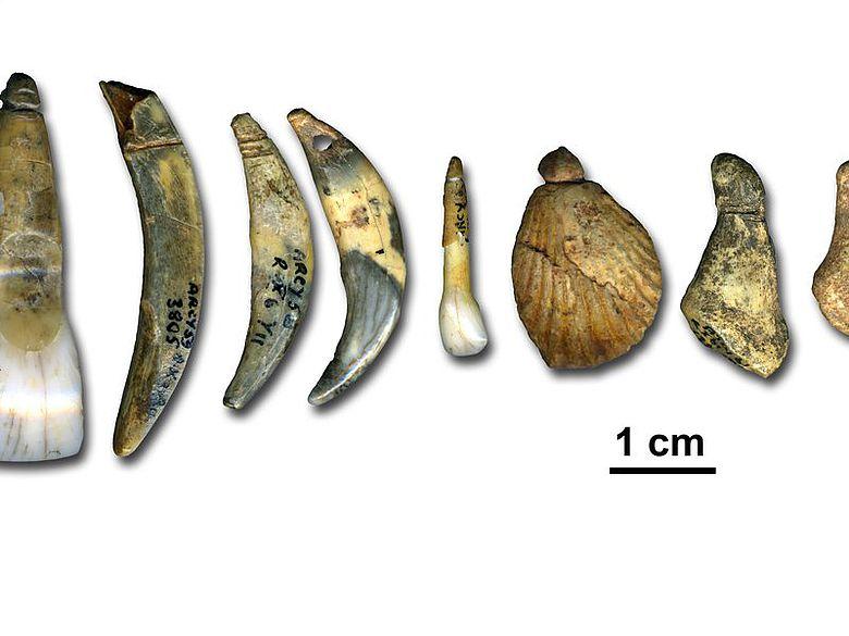 """Von Neandertalern während der archäologischen Kultur """"Châtelperronien"""" hergestellter Körperschmuck"""