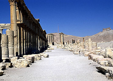 Palmyra: Säulenstraße