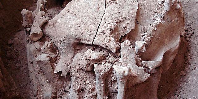 Schädelbestattung von Lapa do Santo