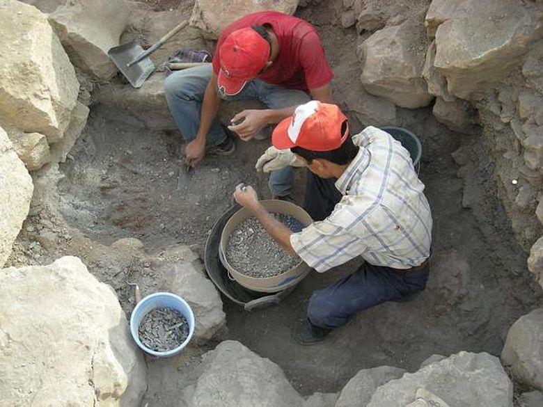 Über 300.000 Knochen haben die Wissenschaftler auf dem Dülük Baba Tepesi gefunden