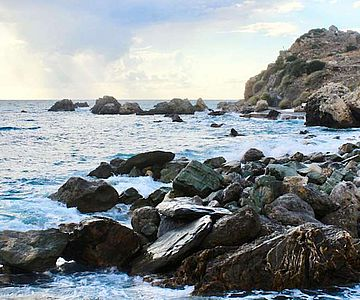 Einige der gesammelten Proben stammen aus Agia Fotini auf Kreta