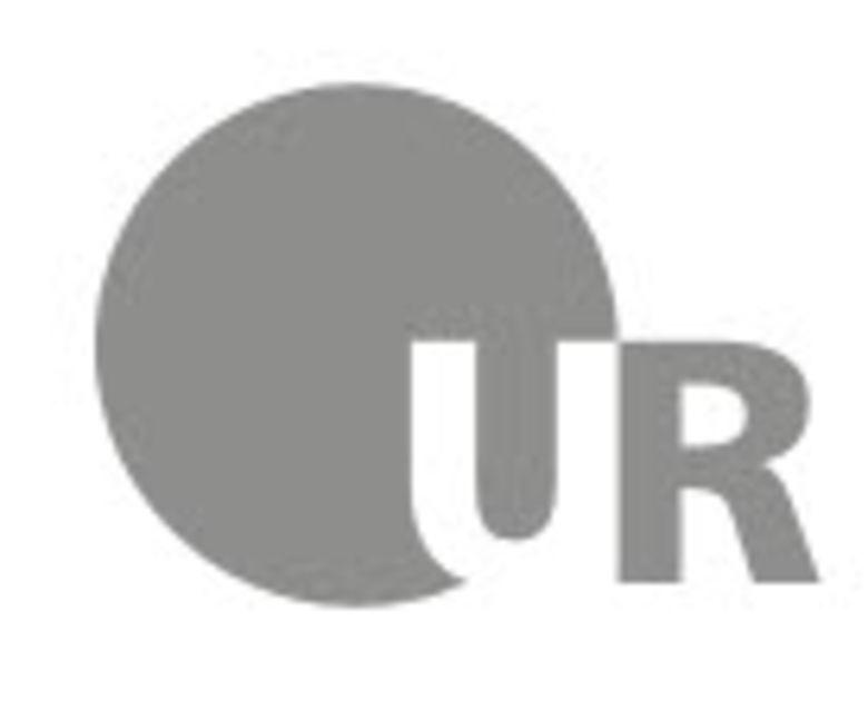 Uni Regensburg Logo