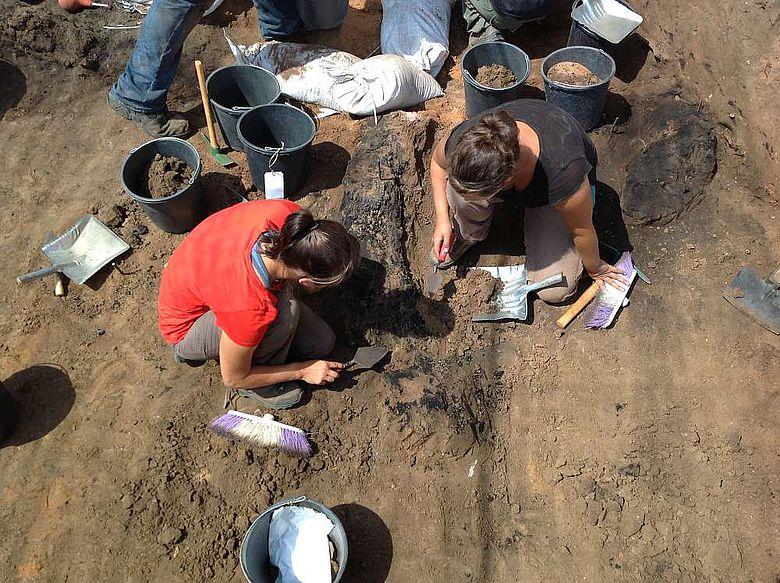 Ein Zedernbalken während der Grabung 2013, Foto: © JCHP (Peilstöcker & Burke)