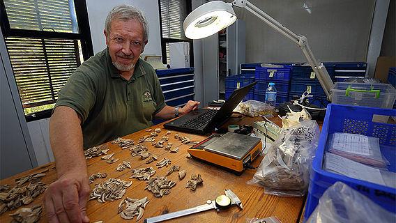 Gerhard Forstenpointner