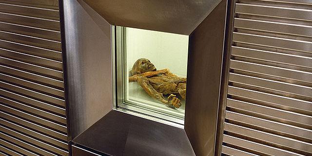 Vitrinenfenster zur Kühlzelle der Mumie vom Hauslabjoch (© Südtiroler Archäologiemuseum)